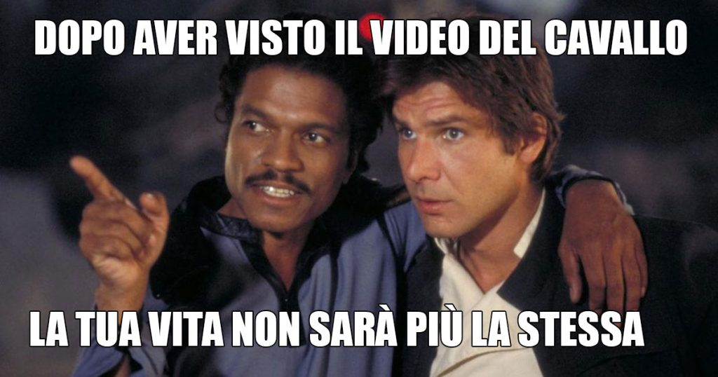 cavallo-video-inganno