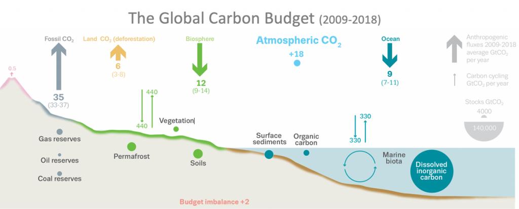 climate change, emissioni, deforestazione
