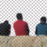 razzismo, Levi-Strauss, Corriere della Sera, Galli della Loggia